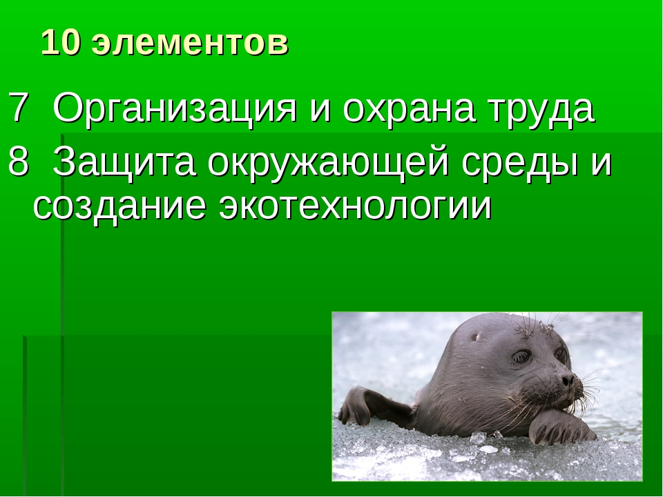 10 элементов 7 Организация и охрана труда 8 Защита окружающей среды и создани...