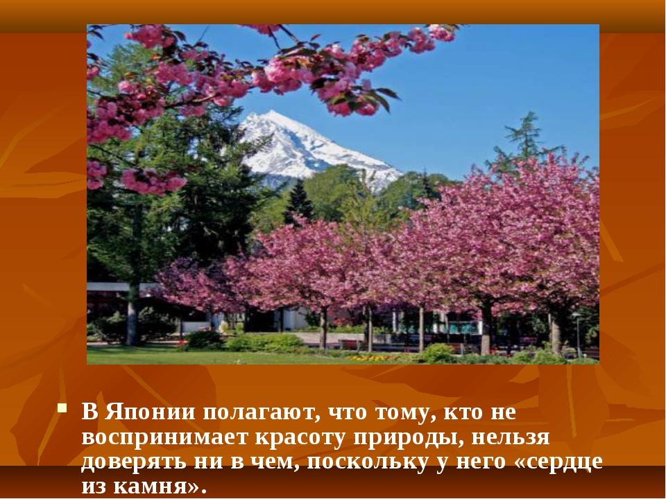 Сакура В Японии полагают, что тому, кто не воспринимает красоту природы, нель...