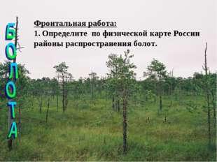 Фронтальная работа: Определите по физической карте России районы распростране