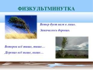 ФИЗКУЛЬТМИНУТКА Ветерок всё тише, тише… Деревцо всё выше, выше… Ветер дует на