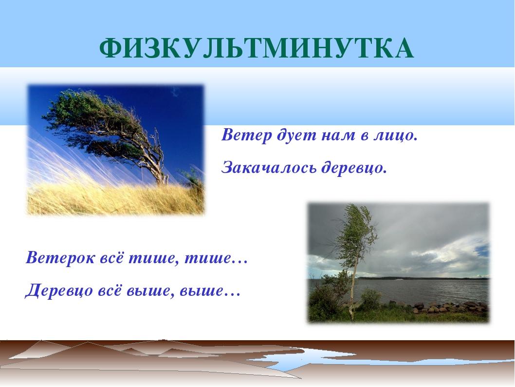 ФИЗКУЛЬТМИНУТКА Ветерок всё тише, тише… Деревцо всё выше, выше… Ветер дует на...