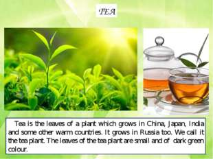TEA Tea is the leaves of a plant which grows in China, Japan, India and some