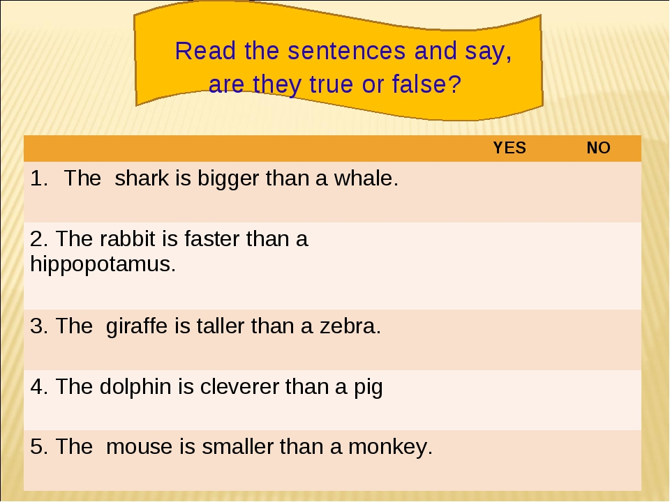 Read the sentences and say, are they true or false? YESNO The shark is big...