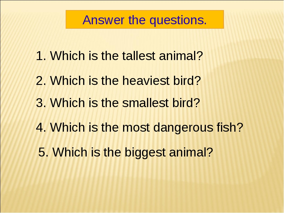 Answer the questions. 1. Which is the tallest animal? 2. Which is the heavies...