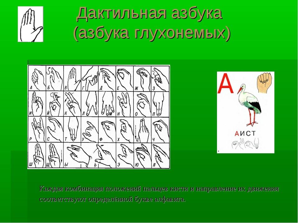 Дактильная азбука (азбука глухонемых) Каждая комбинация положений пальцев кис...
