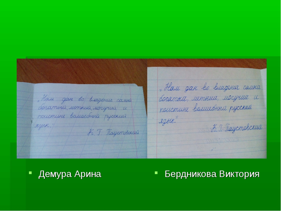Демура Арина Бердникова Виктория