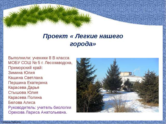 Проект « Легкие нашего города» Выполнили: ученики 8 В класса МОБУ СОШ № 5 г....