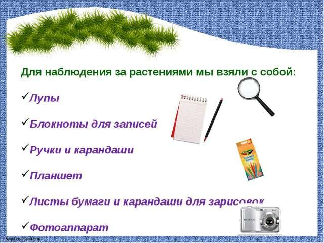 Для наблюдения за растениями мы взяли с собой: Лупы Блокноты для записей Ручк...