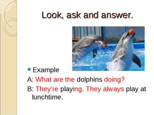 Look, ask and answer. Example A: What are the dolphins doing? B: They're play