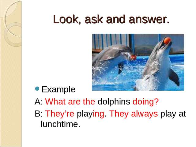 Look, ask and answer. Example A: What are the dolphins doing? B: They're play...
