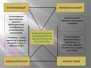 ФОРМИРОВАНИЕ КОМПОНЕНТОВ ЭКОЛОГИЧЕСКОЙ КУЛЬТУРЫ КОГНИТИВНЫЙ ЭМОЦИОНАЛЬНЫЙ ЛИЧ