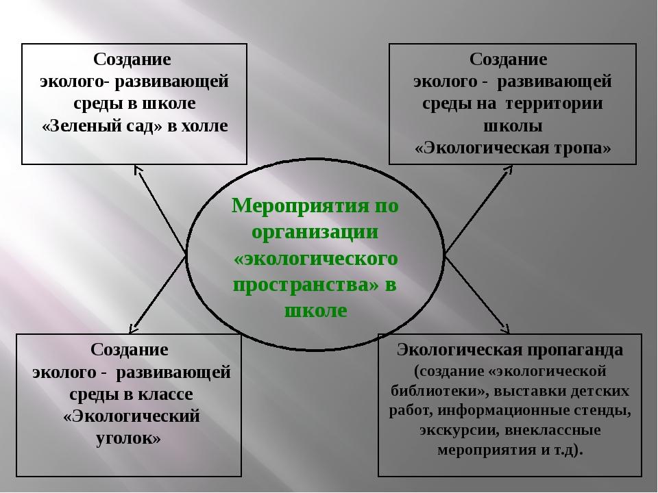 Мероприятия по организации «экологического пространства» в школе Создание эко...