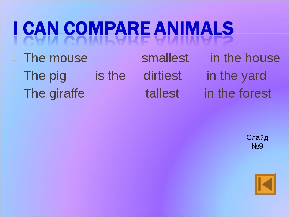 The mouse smallest in the house The pig is the dirtiest in the yard The giraf...