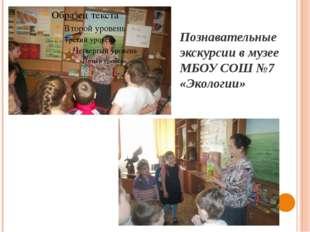 Познавательные экскурсии в музее МБОУ СОШ №7 «Экологии»