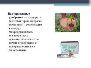 Бактериальные удобрения — препараты (азотобактерин, нитрагин почвенный), сод