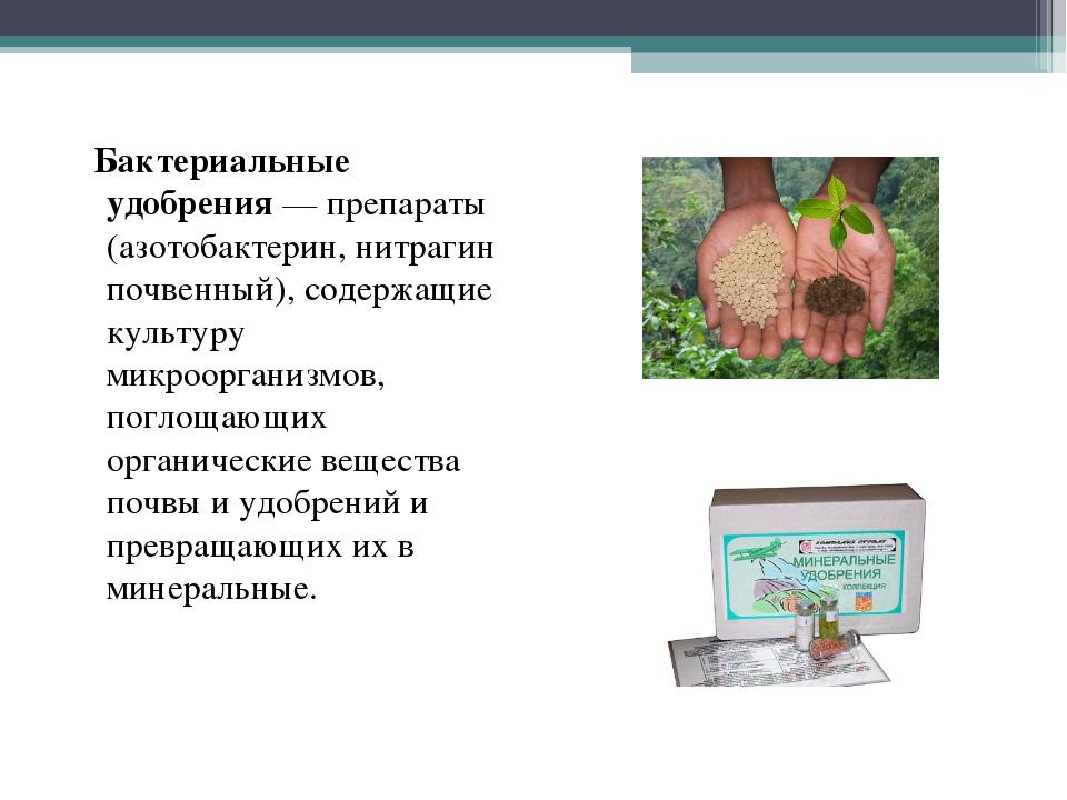 Бактериальные удобрения — препараты (азотобактерин, нитрагин почвенный), сод...