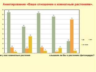 Анкетирование «Ваше отношение к комнатным растениям».