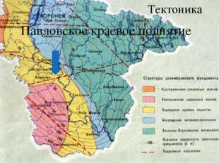 Павловское краевое поднятие Тектоника
