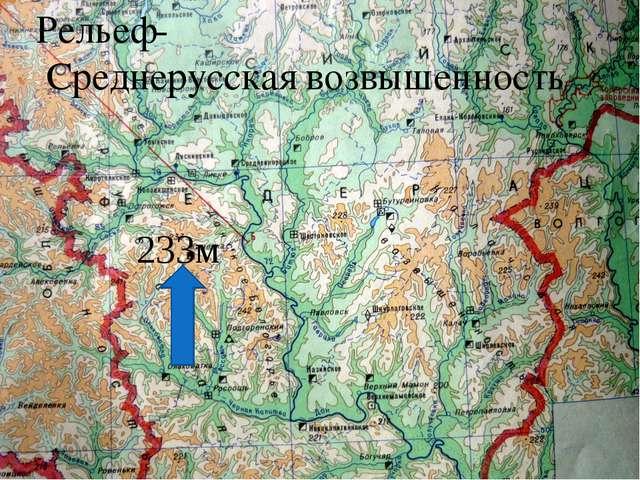 Рельеф- Среднерусская возвышенность 233м