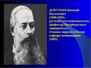 ДОКУЧАЕВ Василий Васильевич (1846-1903), русский естествоиспытатель, профессо