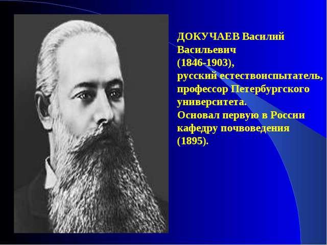 ДОКУЧАЕВ Василий Васильевич (1846-1903), русский естествоиспытатель, профессо...