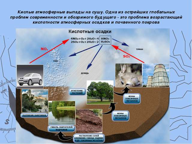 Кислые атмосферные выпады на сушу. Одна из острейших глобальных проблем совре...