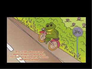 Где можно кататься на велосипедах?