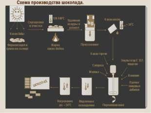 Схема производства шоколада.