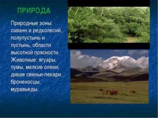 ПРИРОДА Природные зоны: саванн и редколесий, полупустынь и пустынь, области в