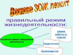 Разумный порядок чередований деятельности режим работы и отдыха Режим питания