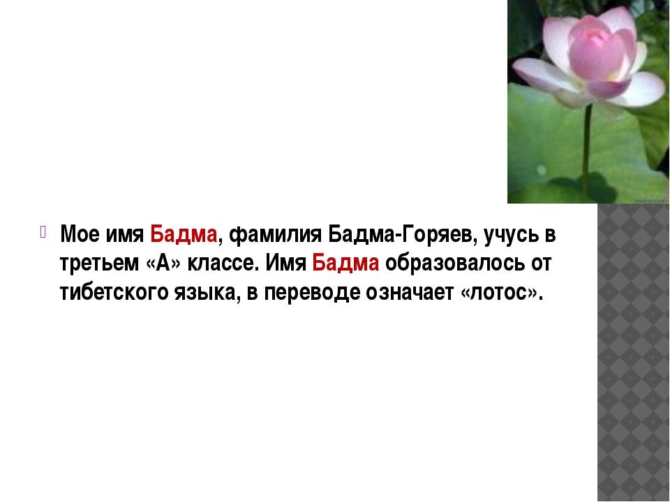 Мое имя Бадма, фамилия Бадма-Горяев, учусь в третьем «А» классе. Имя Бадма о...