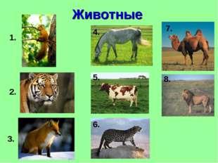 Животные 1. 2. 3. 4. 5. 6. 7. 8.