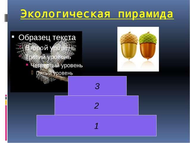 1 2 3 Экологическая пирамида