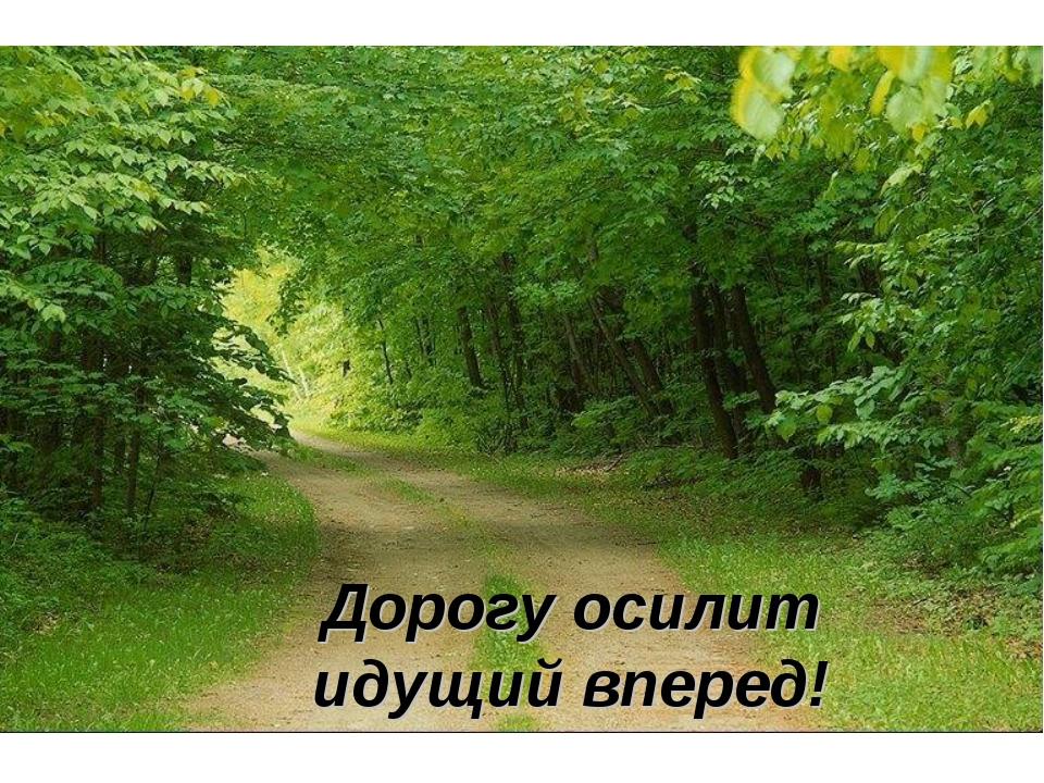 Дорогу осилит идущий вперед!