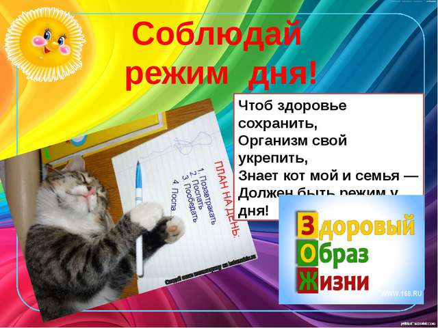 Чтоб здоровье сохранить, Организм свой укрепить, Знает кот мой и семья — Долж...