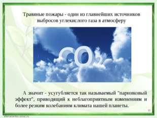 * Травяные пожары - один из главнейших источников выбросов углекислого газа в