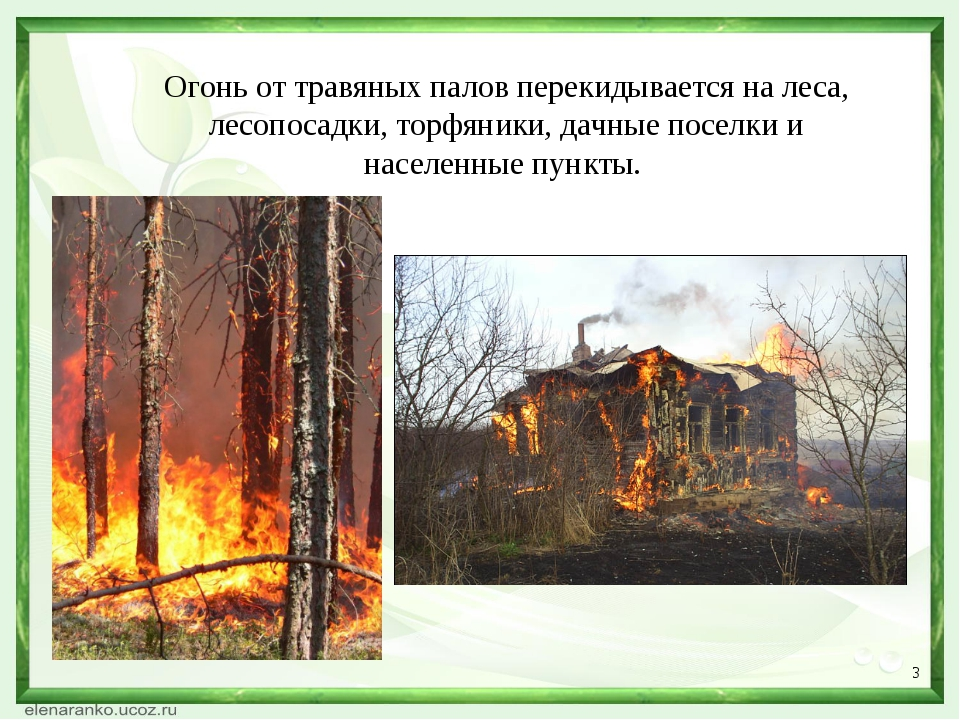 * Огонь от травяных палов перекидывается на леса, лесопосадки, торфяники, дач...
