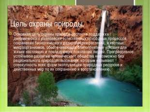 Цель охраны природы. Основная цель охраны природы состоит в поддержке динамич