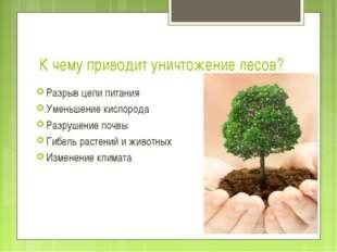 К чему приводит уничтожение лесов? Разрыв цепи питания Уменьшение кислорода Р