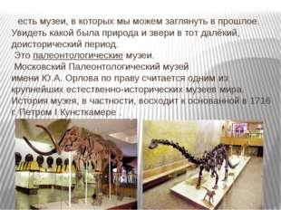 есть музеи, в которых мы можем заглянуть в прошлое. Увидеть какой была приро