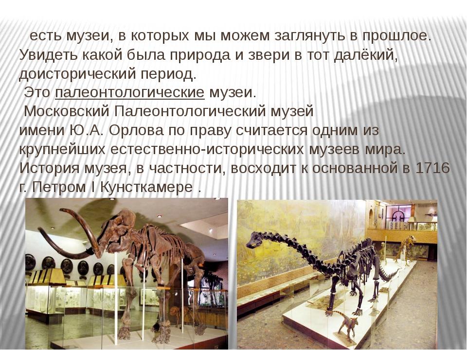есть музеи, в которых мы можем заглянуть в прошлое. Увидеть какой была приро...