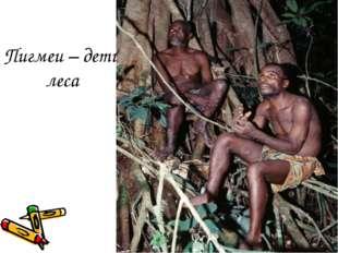 Пигмеи – дети леса