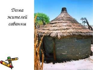 Дома жителей саванны