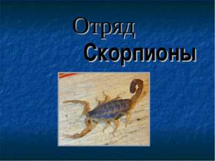 Скорпионы Отряд
