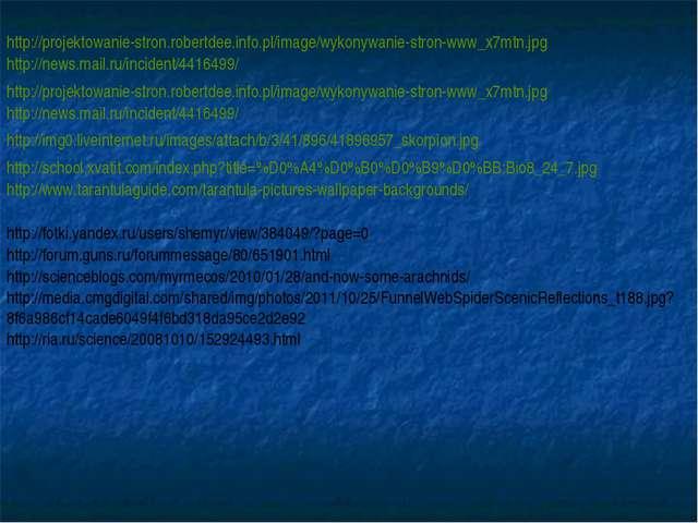 http://projektowanie-stron.robertdee.info.pl/image/wykonywanie-stron-www_x7mt...