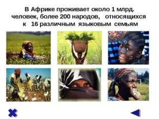 В Африке проживает около 1 млрд. человек, более 200 народов, относящихся к 16