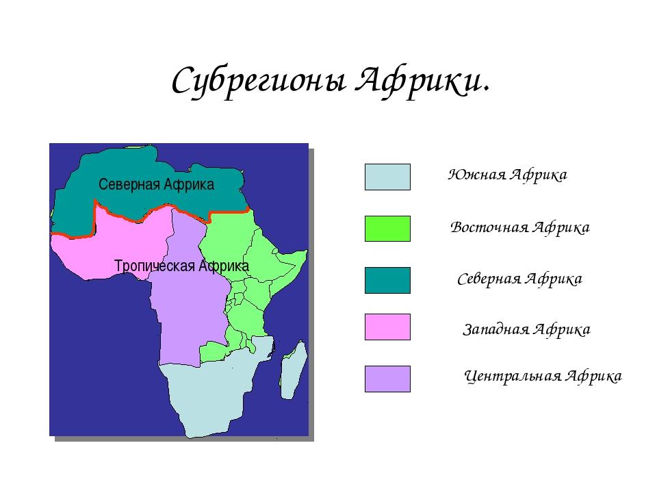 Субрегионы Африки. Южная Африка Восточная Африка Северная Африка Западная Афр...