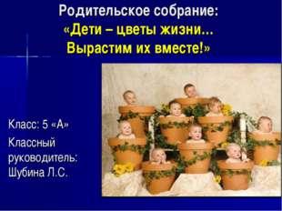 Родительское собрание: «Дети – цветы жизни… Вырастим их вместе!» Класс: 5 «А»