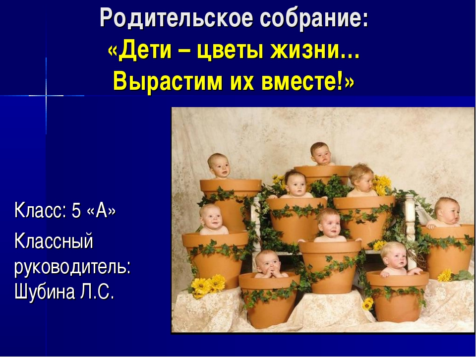 Родительское собрание: «Дети – цветы жизни… Вырастим их вместе!» Класс: 5 «А»...