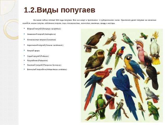 1.2.Виды попугаев На земле сейчас обитает 324 вида попугаев. Все они живут в...